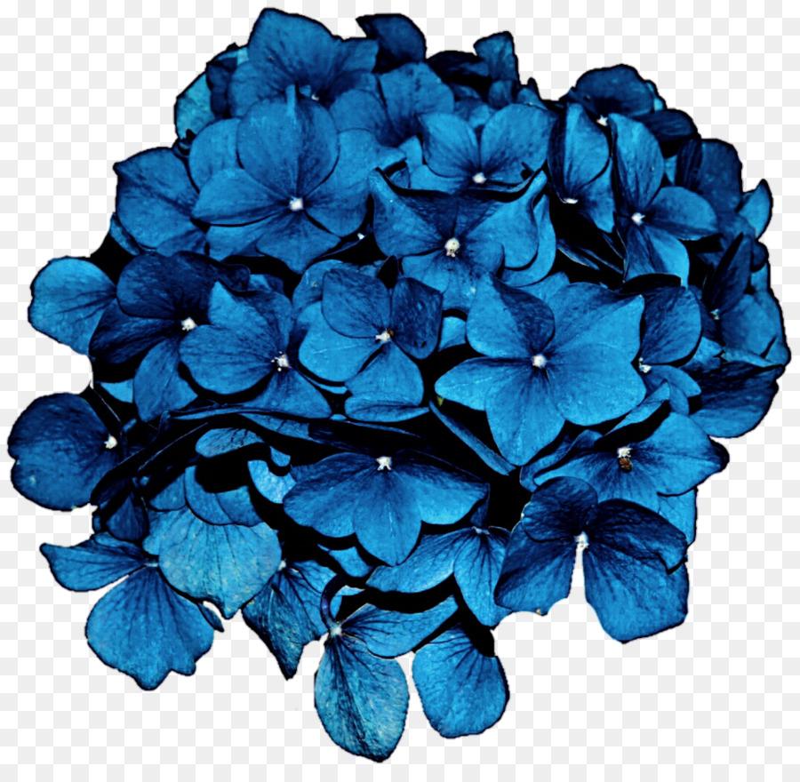 Blumen Blau Clipart