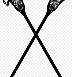 lacrosse sticks lacrosse women s lacrosse monochrome photography tree png [ 900 x 1440 Pixel ]