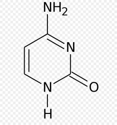 flucytosine 5 methylcytosine thymine pyrimidine formula png download 744 992 free transparent flucytosine png download  [ 900 x 1000 Pixel ]