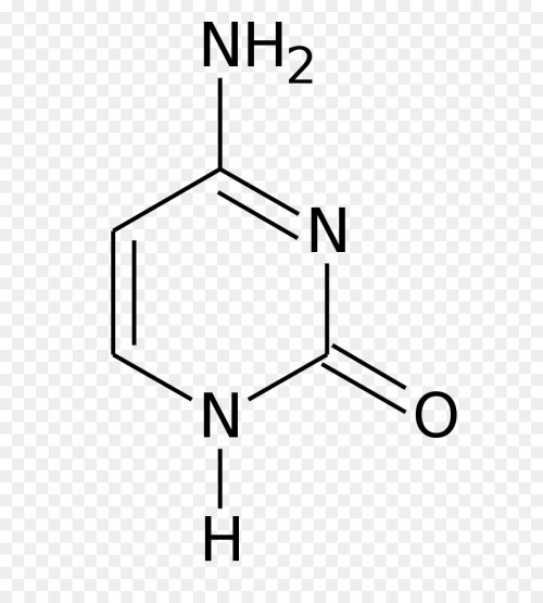 small resolution of flucytosine 5 methylcytosine thymine pyrimidine formula png download 744 992 free transparent flucytosine png download