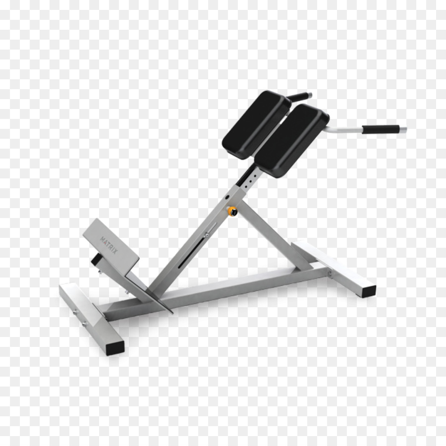 roman chair gym equipment antique directors hyperextension bench exercise weight training