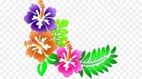 Flower Clip art - Hawaii flower png download - 600*500 ...