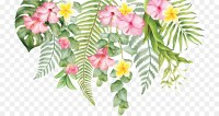 Cut flowers Wall decal Floral design - tropical flower png ...