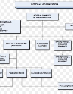 Diagram organizational chart centers for disease control and prevention business flyer also rh kiss