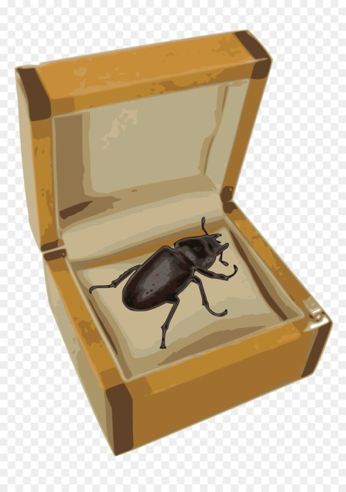 small resolution of volkswagen beetle beetle box pollinator png
