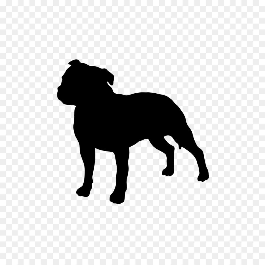 Staffordshire Bull Terrier American Pit Bull Terrier