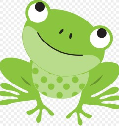 frog tree frog toad grass png [ 900 x 920 Pixel ]