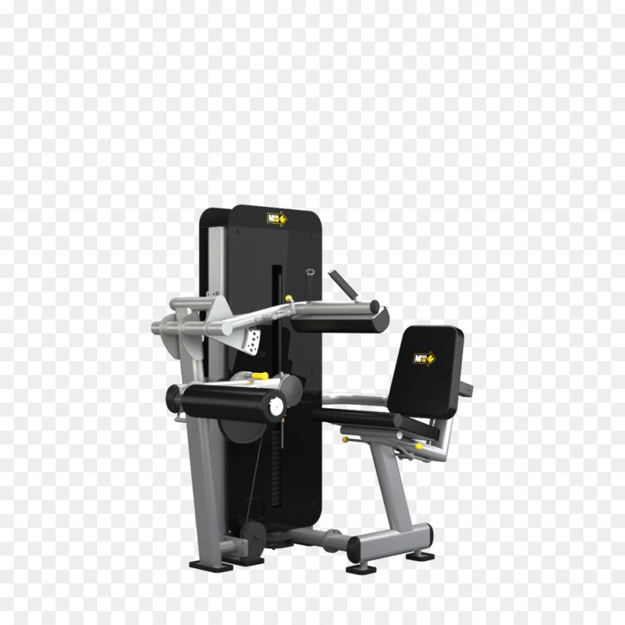 Ejercicio De Sentadilla De Musculación Press De Banca Gimnasio