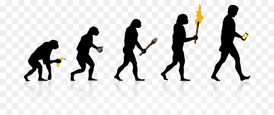 Về nguồn Gốc của Loài Người tiến hóa Homo sapiens học