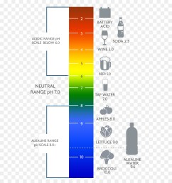 ph water alkaline diet text diagram png [ 900 x 1040 Pixel ]