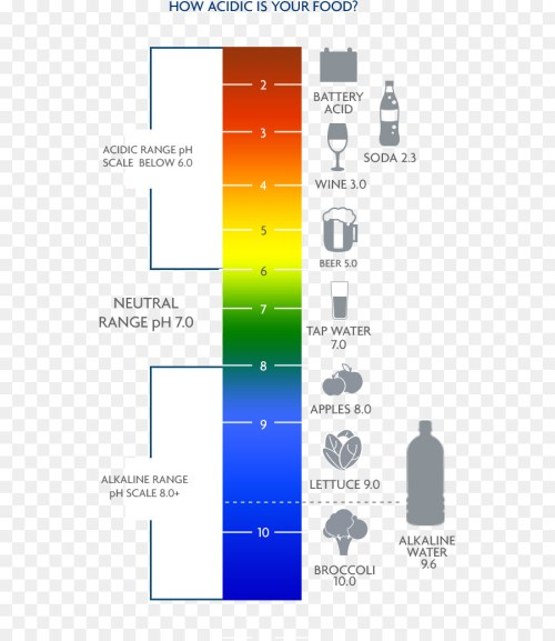 small resolution of ph water alkaline diet text diagram png
