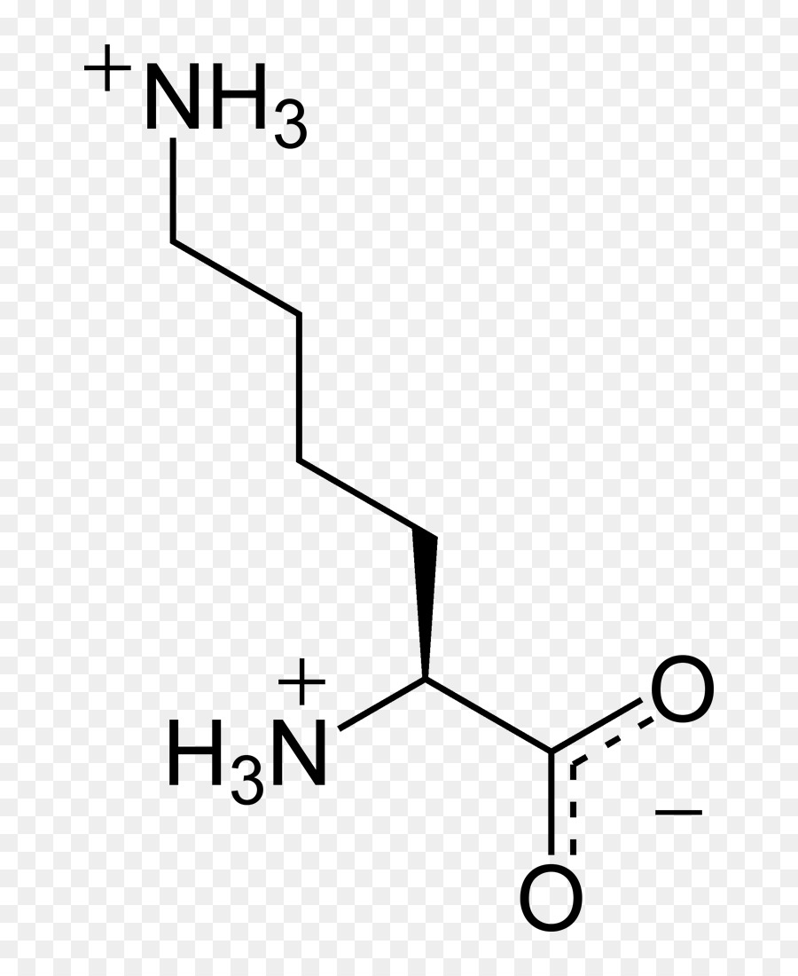 medium resolution of nucleic acid monomer amino acid white black png