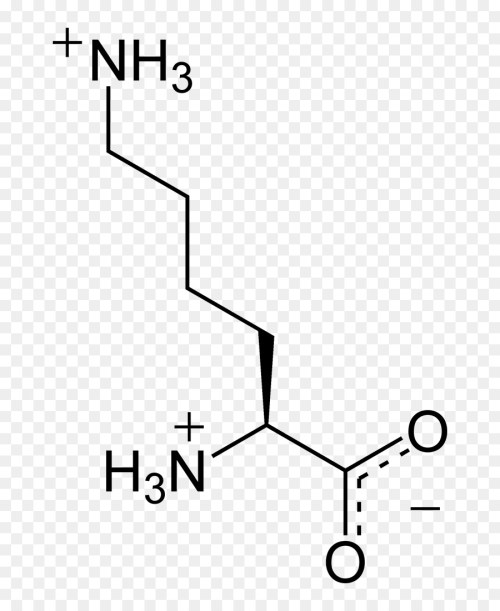 small resolution of nucleic acid monomer amino acid white black png