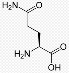 aspartic acid amino acid lysine text diagram png [ 900 x 980 Pixel ]