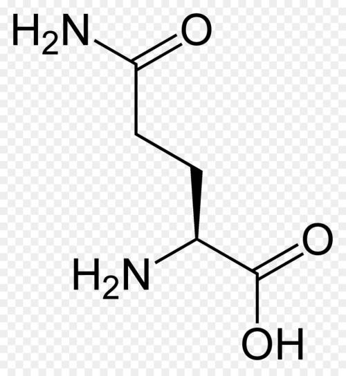 small resolution of aspartic acid amino acid lysine text diagram png