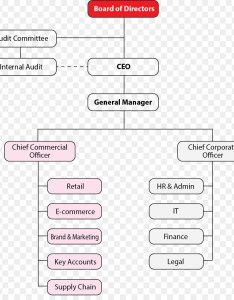 Organizational structure  commerce business chart al ahly sc egypt also rh kiss