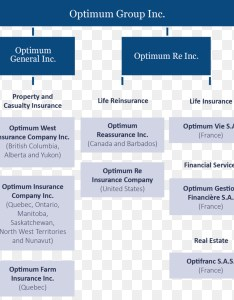 Organizational chart new york life insurance company business also rh kiss
