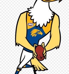 west coast eagles 2017 afl season mascot yellow beak png [ 900 x 1180 Pixel ]