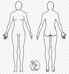 diagram of body drawing wiring diagram forward diagram of body drawing [ 900 x 900 Pixel ]