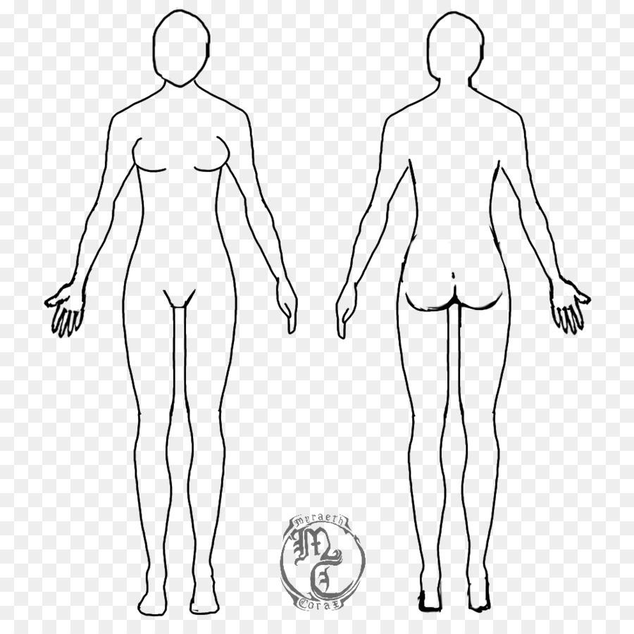 medium resolution of diagram of body drawing wiring diagram forward diagram of body drawing