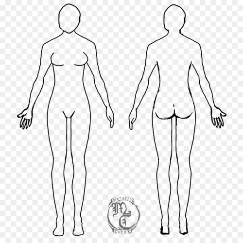 small resolution of diagram of body drawing wiring diagram forward diagram of body drawing