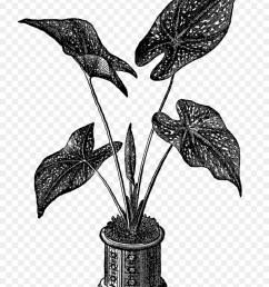 royalty free gravur herz jesu topfpflanzen clipart [ 900 x 1220 Pixel ]