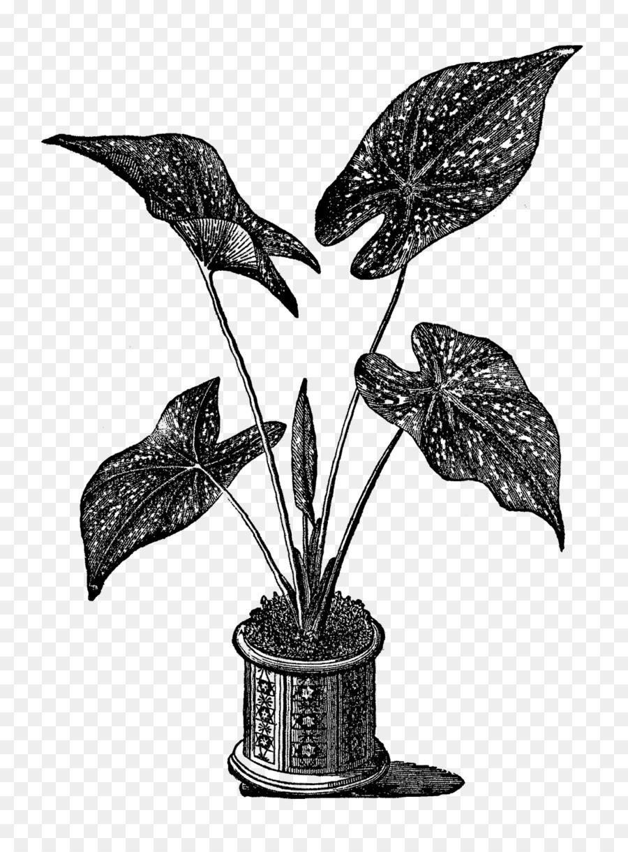 medium resolution of royalty free gravur herz jesu topfpflanzen clipart