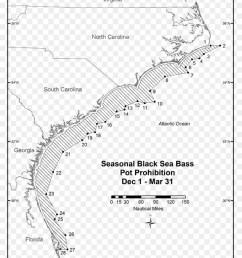 fishing black sea bass fish text map png [ 900 x 1140 Pixel ]