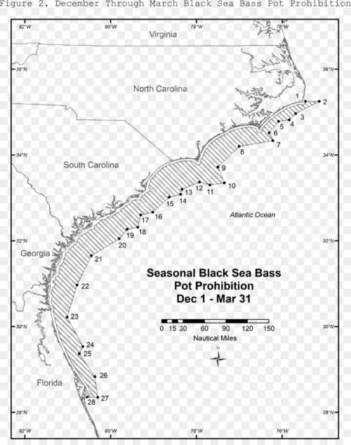 small resolution of fishing black sea bass fish text map png