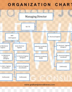 Organizational chart diagram consultant company costco structure also rh kiss