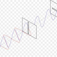Mechanical Wave Diagram Parts Of A Seed Worksheet Polarized Light Transverse Png Download 2000