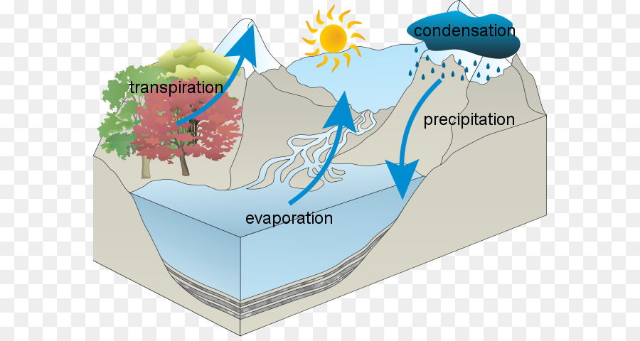 water cycle diagram with questions 1 phase contactor wiring national secondary school middle microscope worksheets