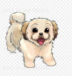 dog breed puppy shih tzu maltese dog maltipoo puppy drawing png sketch png download 1024 1024 free transparent dog breed png download  [ 900 x 900 Pixel ]