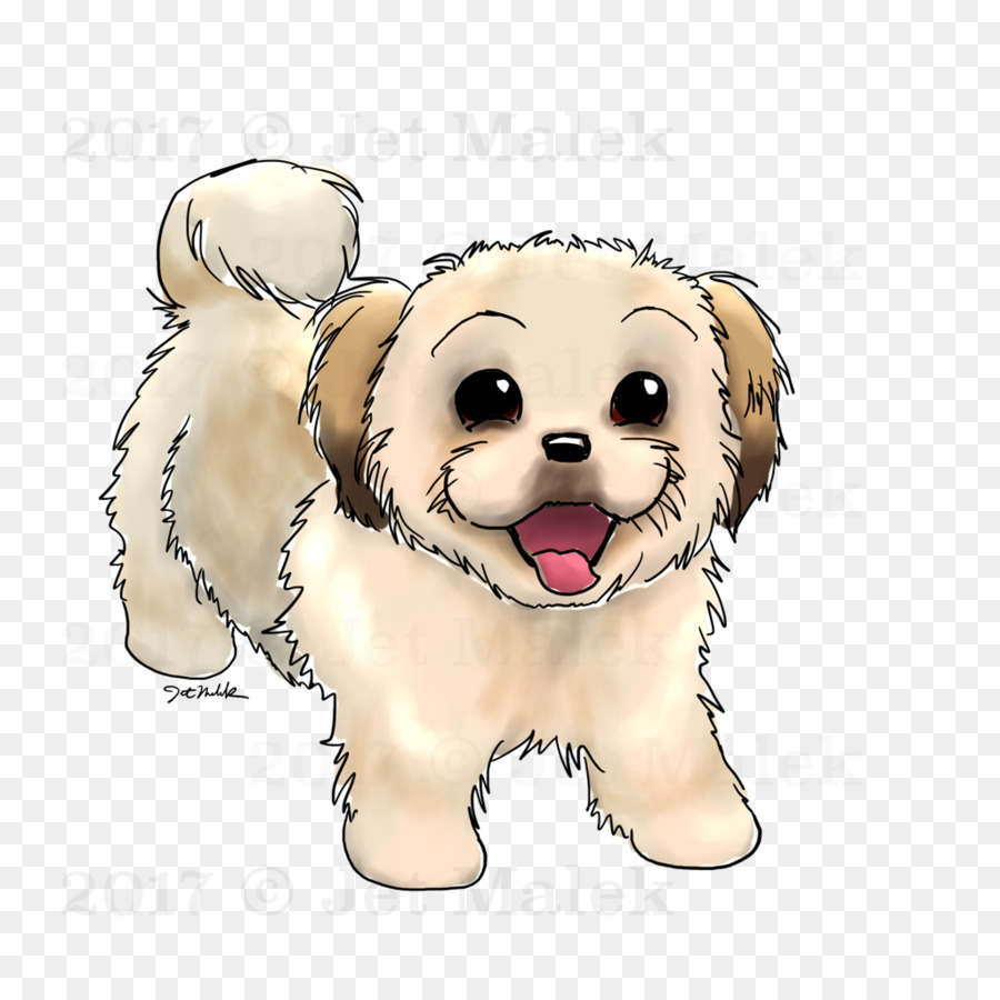 medium resolution of dog breed puppy shih tzu maltese dog maltipoo puppy drawing png sketch png download 1024 1024 free transparent dog breed png download