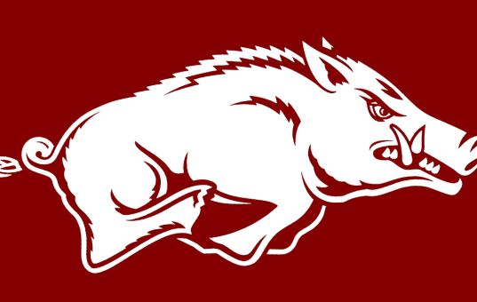 Rough year for Razorback fans and retailers
