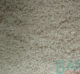 Đôi nét tình hình xuất khẩu gạo nước ta