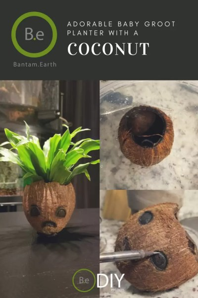 adorable baby groot coconut planter