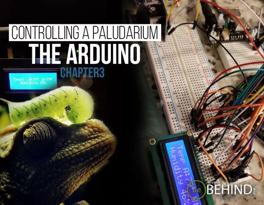 BEHINDtheBUILD chapter 3 controlling the paludarium