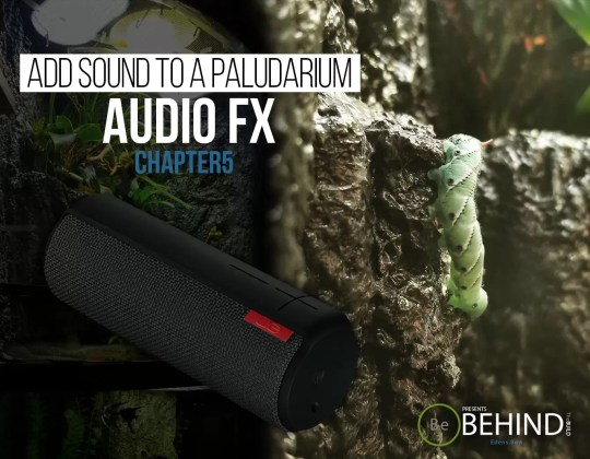 BEHINDtheBUILD chapter 5 add sound to a paludarium