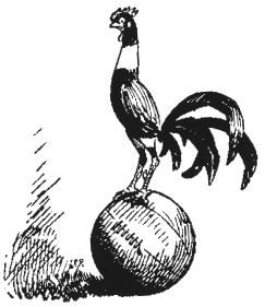 bantam graphic 1909