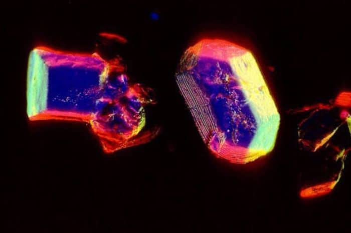 microscopic things: Things Seems Differently Under Microscope