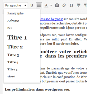 wordpress seo balise title dans un article