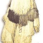 Masques du Gabon
