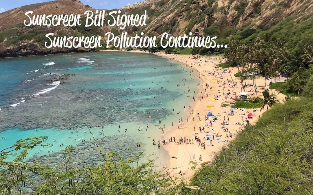 Hawai'i Sunscreen Bill Signing One Year Later…