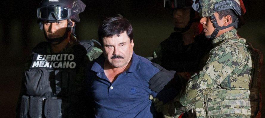 Bố già El Chapo được dẫn độ sang Mỹ