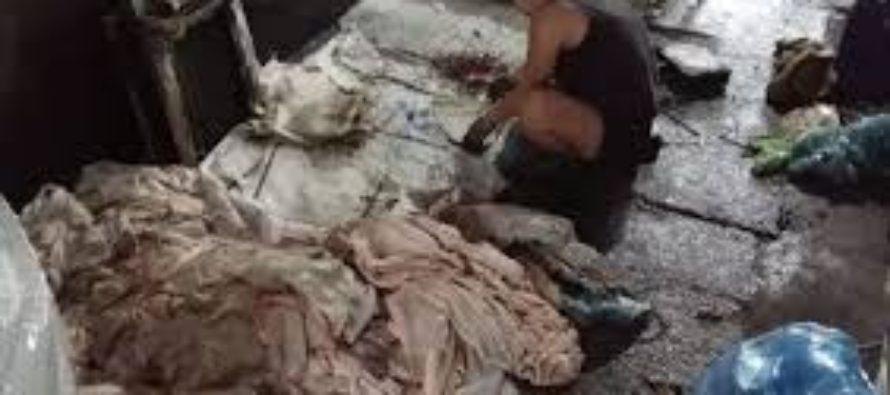 Công sản Việt Nam tiếp tay với Tàu Cộng giết dân qua thực phẩm độc hại