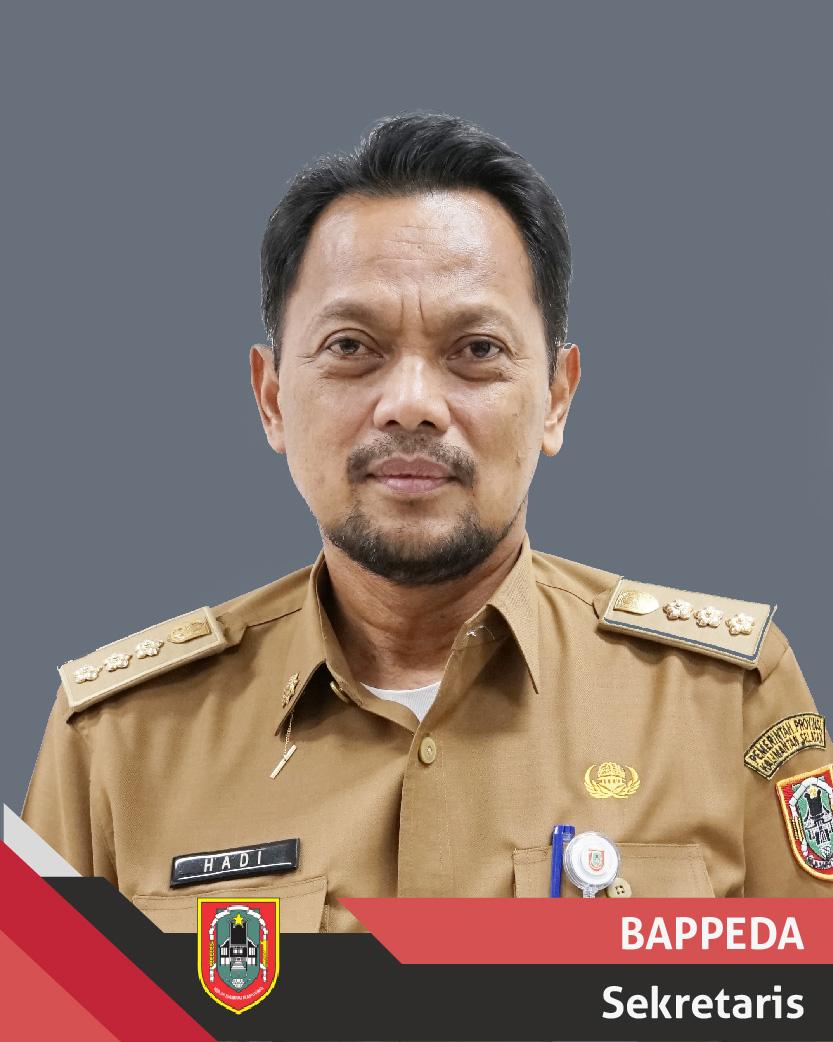 Drs. H. Hadi Purwanto, M.AP