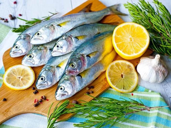 تساهم الأسماك الدهنية في تكوين الكولاجين
