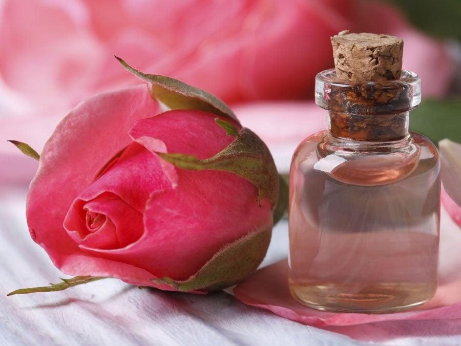 مصل زيت الورد