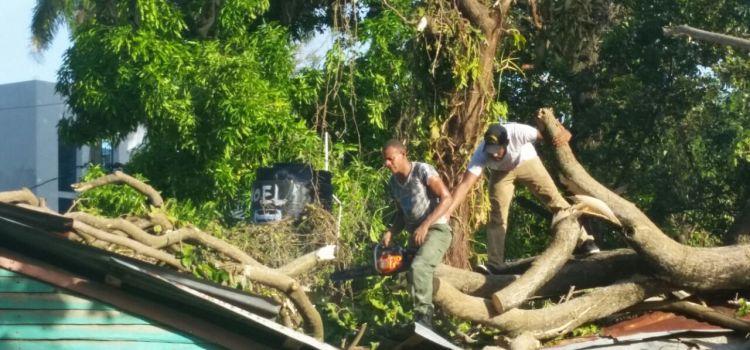 Trabajan en recuperación de Puerto Plata